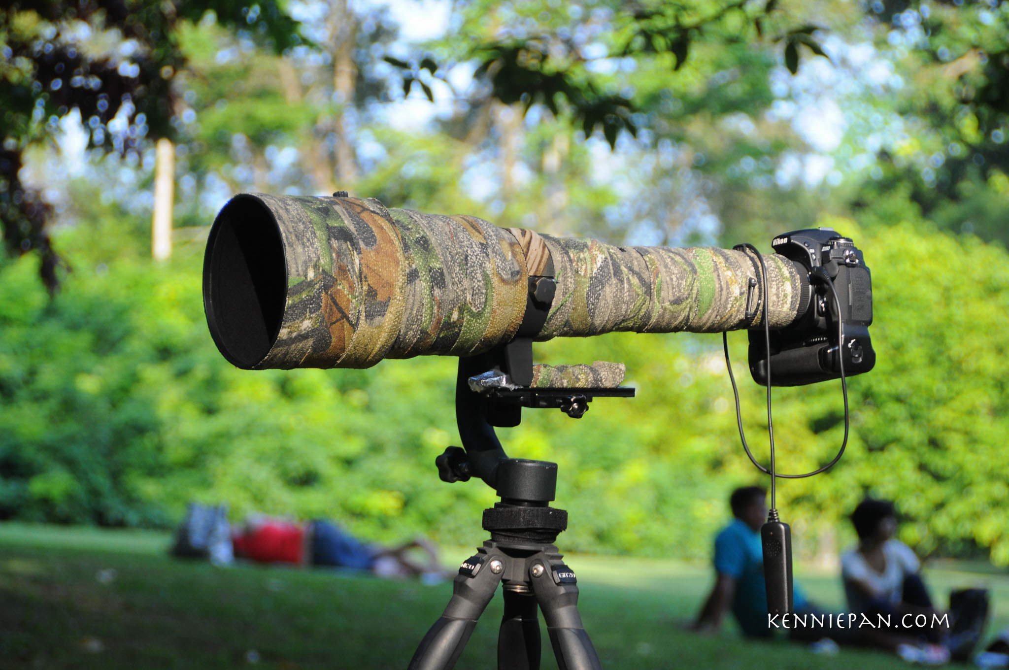 Sigma 300 800mm EX DG HSM